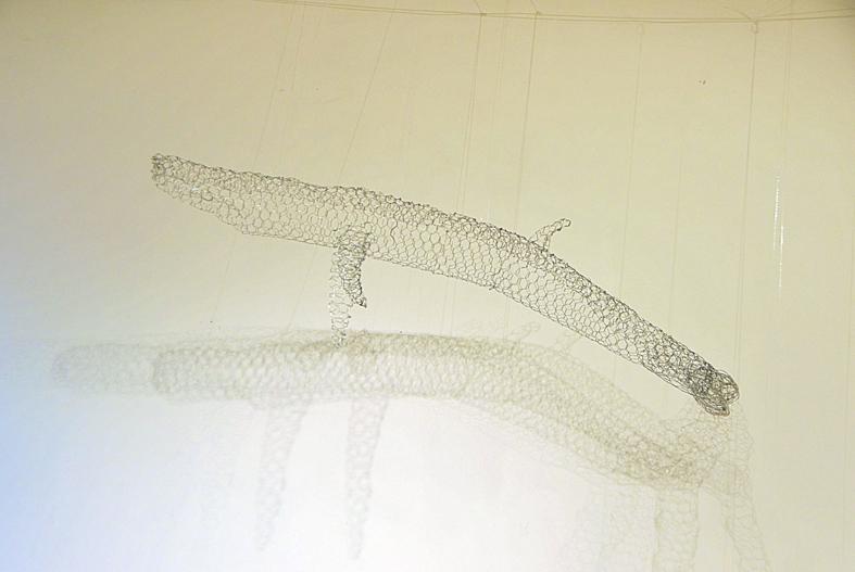 10 Whale (2).jpg