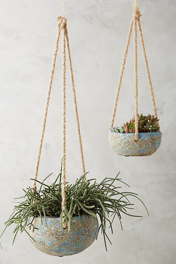 Top 12 Favorite Planters + Greens for indoor & outdoor