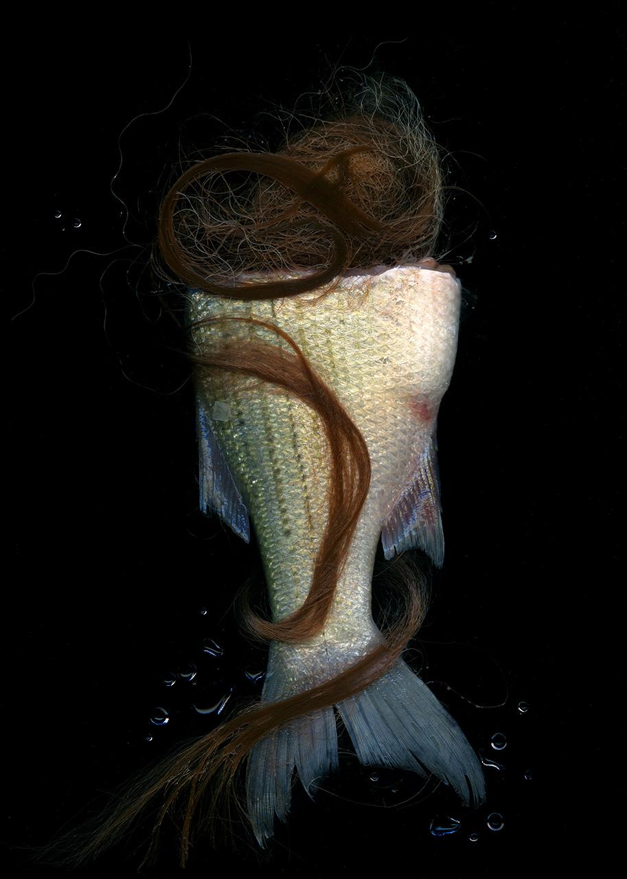 Hair Trout2.jpg