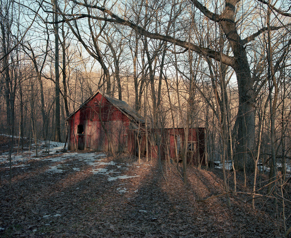 abandon barn in wood_web.jpg