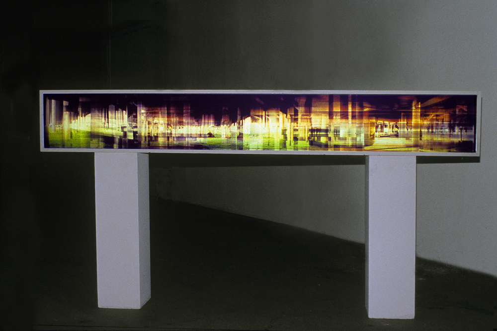 Ghosted Forest, Overpass Exhibit