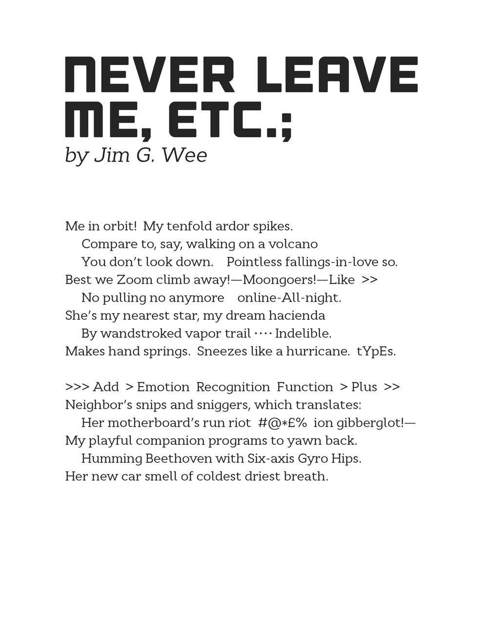 JimGWee_NeverLeaveMeEtc.jpg