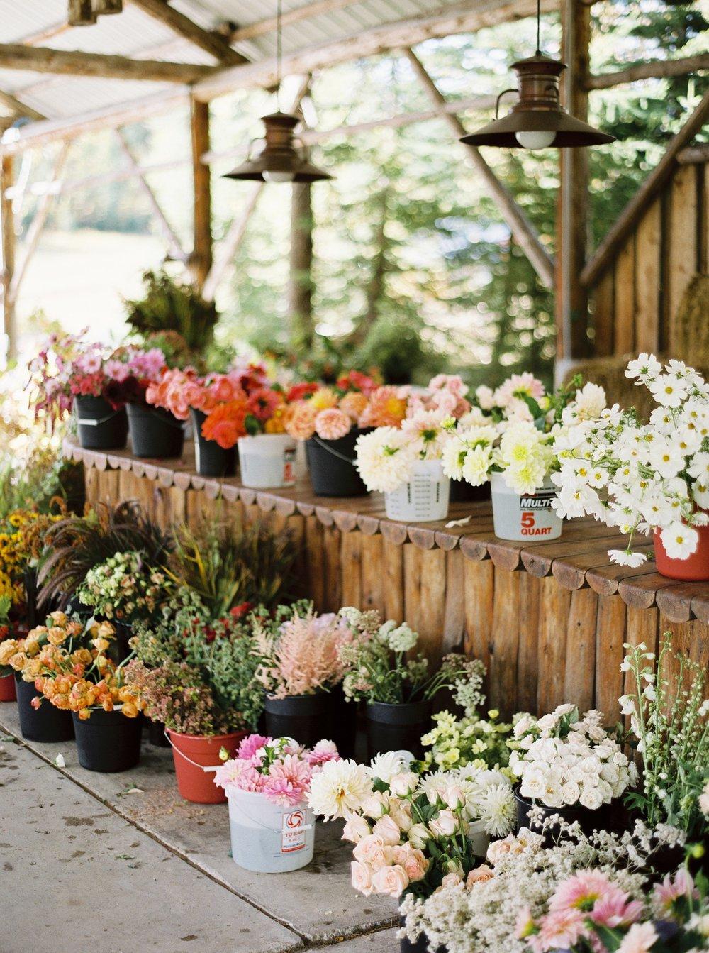 RebeccaHollis-bouquets_005.jpg
