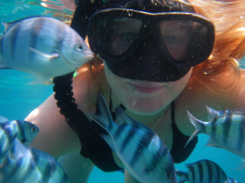 travel_thailand_snorkeling