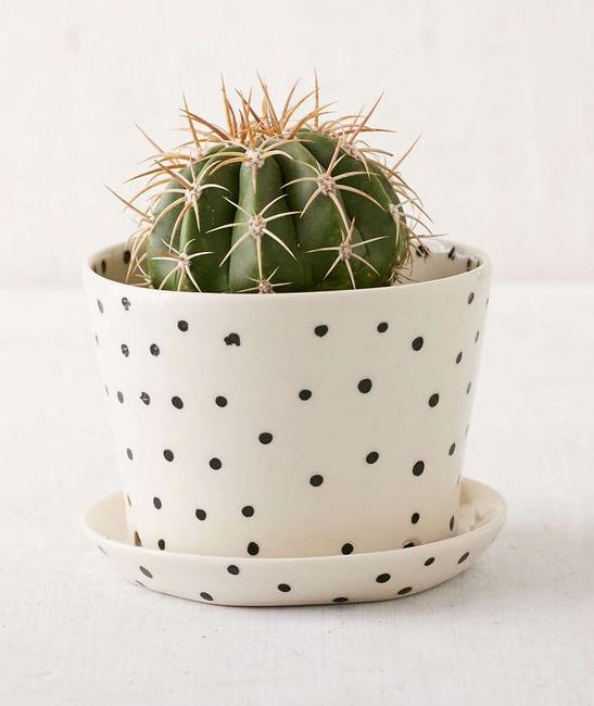 soi55lifestyle_pinsofhteweek_ceramics_6