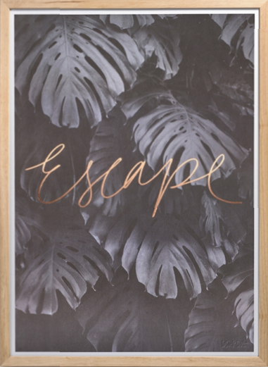 soi55_lifestyle_rose_gold_blacklist_escape_print