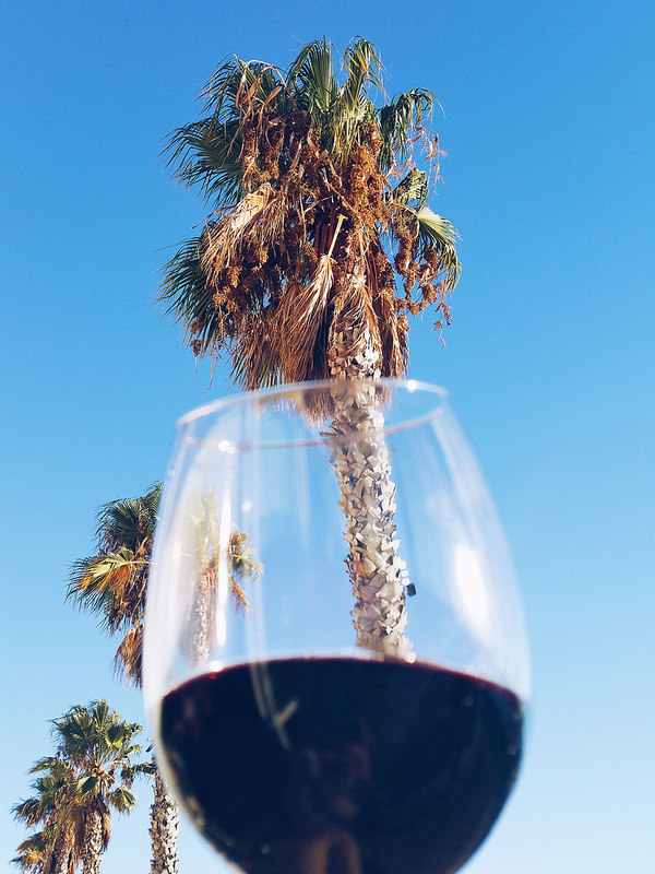 soi55_lifestyle_palmtrees_and_red_wine_lagos_portugal