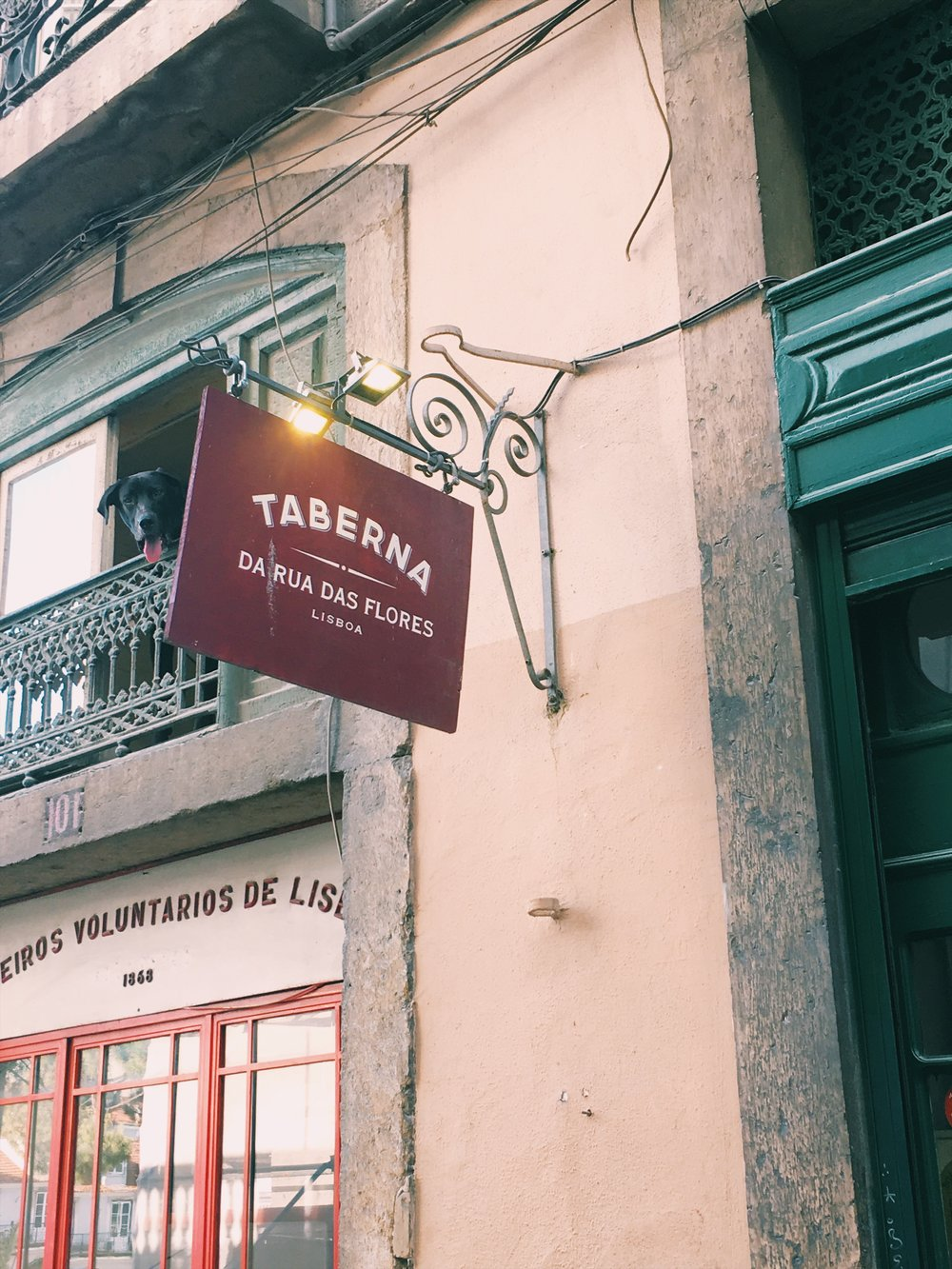 Taberna da Rua Das Flores / Lisbon eats + drinks travel guide | Soi 55 Travels
