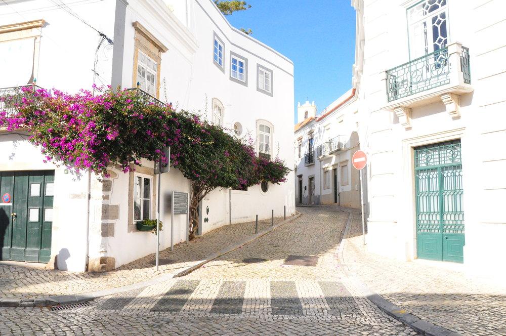 Tavira and bougainvillea   A  day in Tavira    Algarve, Portugal   Soi 55 Travels