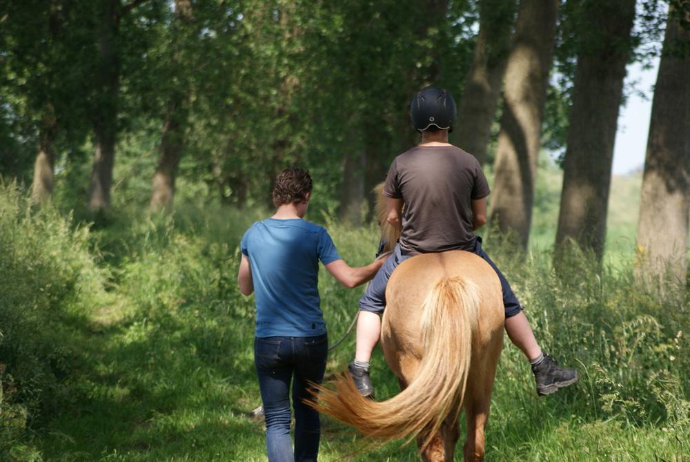 ... en op het paard