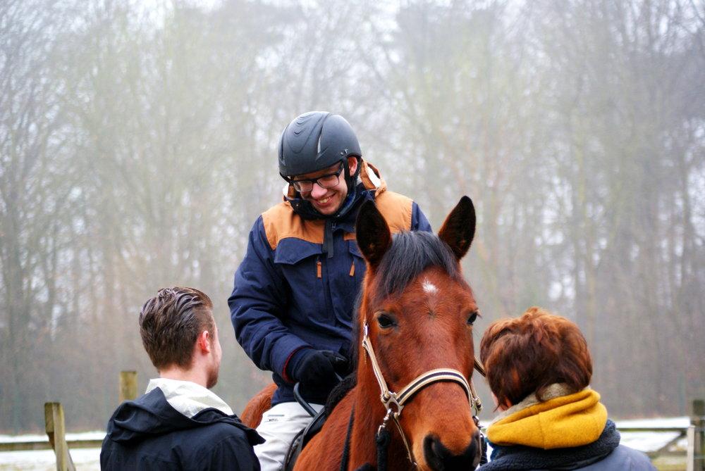 De pedagoog onder de paarden