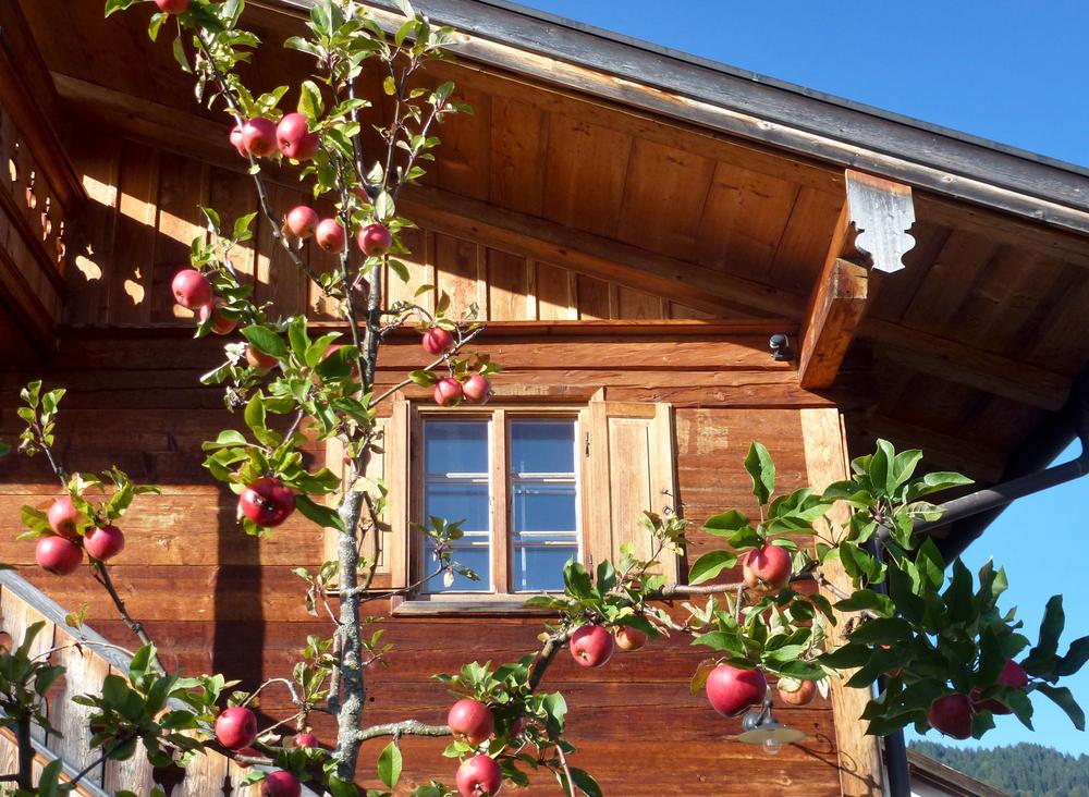 Haus_05_P1030631.jpg