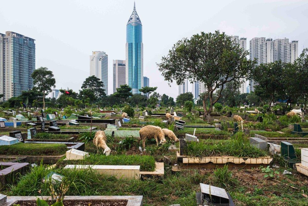 Karet Bivat cemetery. Jakarta, Indonesia