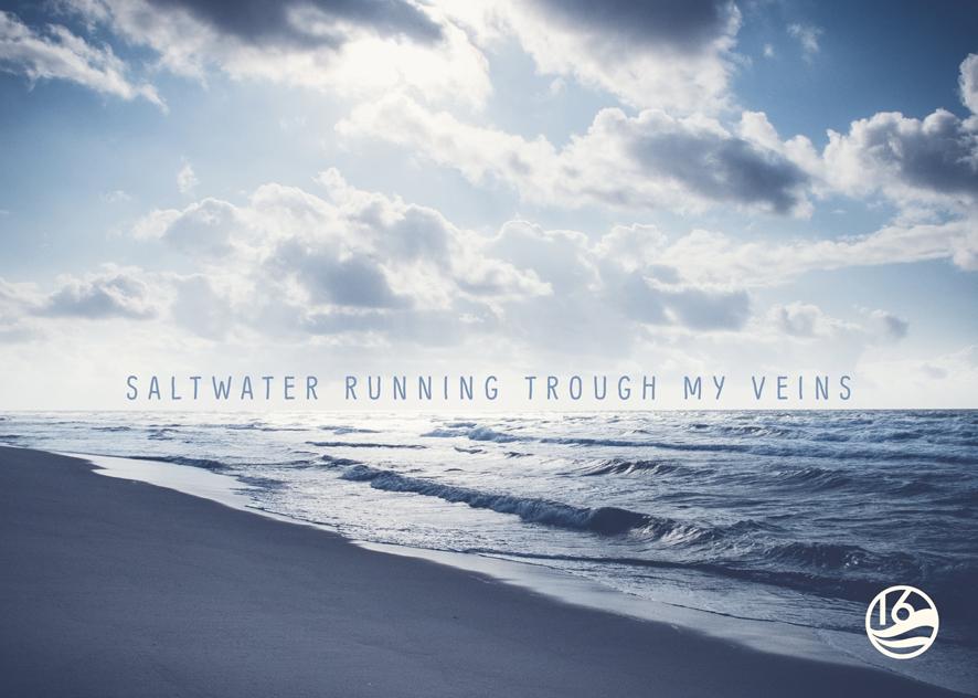 Postkarte Buhne16 Saltwater.jpg