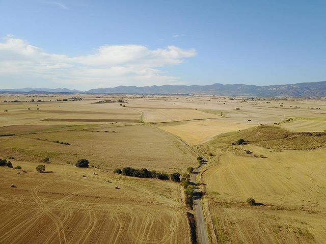 📷Hoya de Huesca🌾 📷Huesca's Pit🌾 • • • #drones #drone #elcuervoblanco #instadrone #flowers #dronestagram #dji #mavicpro #mavic #dronestagram #dronepic #droneshot #dronepic #dronephotography #landscape #landscapephotography #field #texture #art #outdoors #field #nature #spring #love #photography #dronepilot #dronefly #dronelife #aerialphoto #sky #aerialphotography #coventry