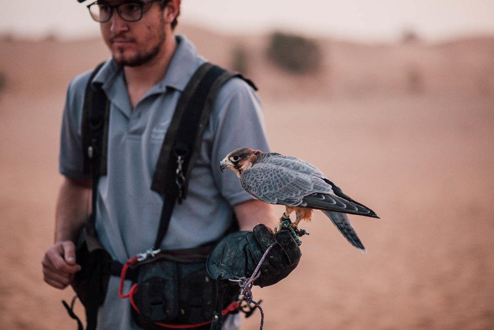 Dubai - Desert (1 of 1)-48.jpg
