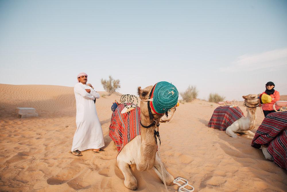 Dubai - Desert (1 of 1)-51.jpg