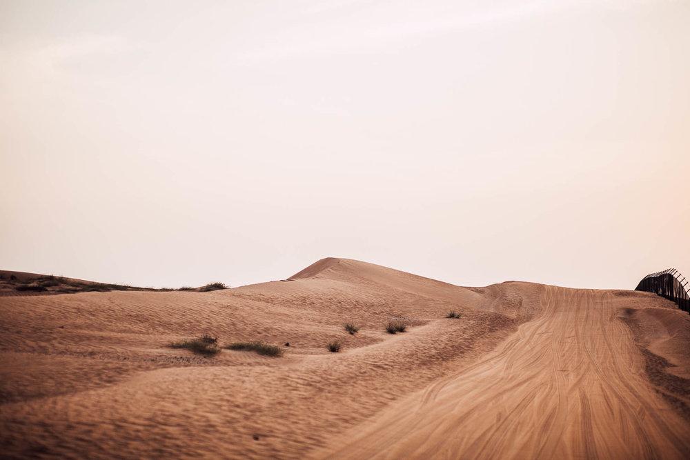 Dubai - Desert (1 of 1)-43.jpg