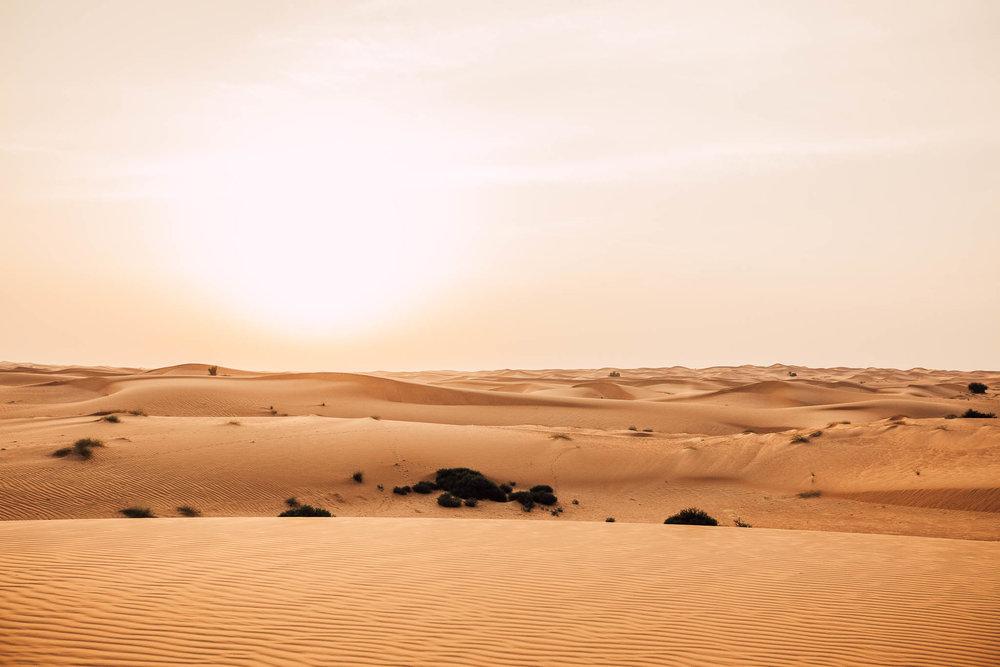 Dubai - Desert (1 of 1)-38.jpg