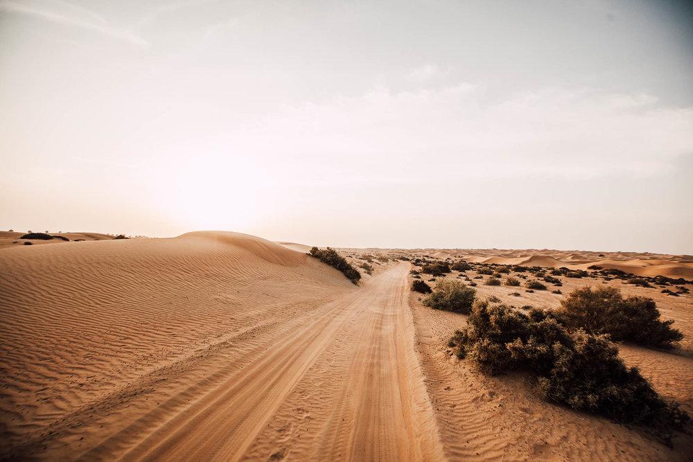 Dubai - Desert (1 of 1)-36.jpg