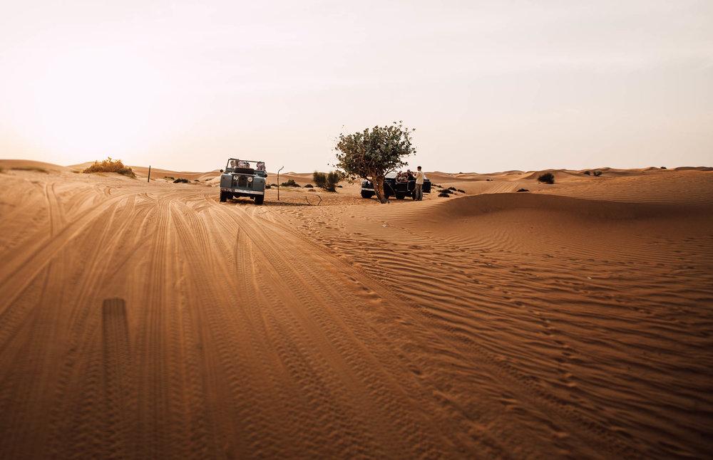 Dubai - Desert (1 of 1)-35.jpg