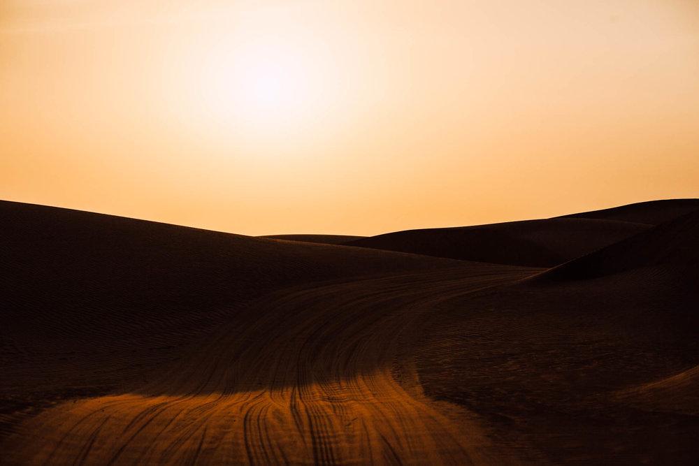 Dubai - Desert (1 of 1)-33.jpg