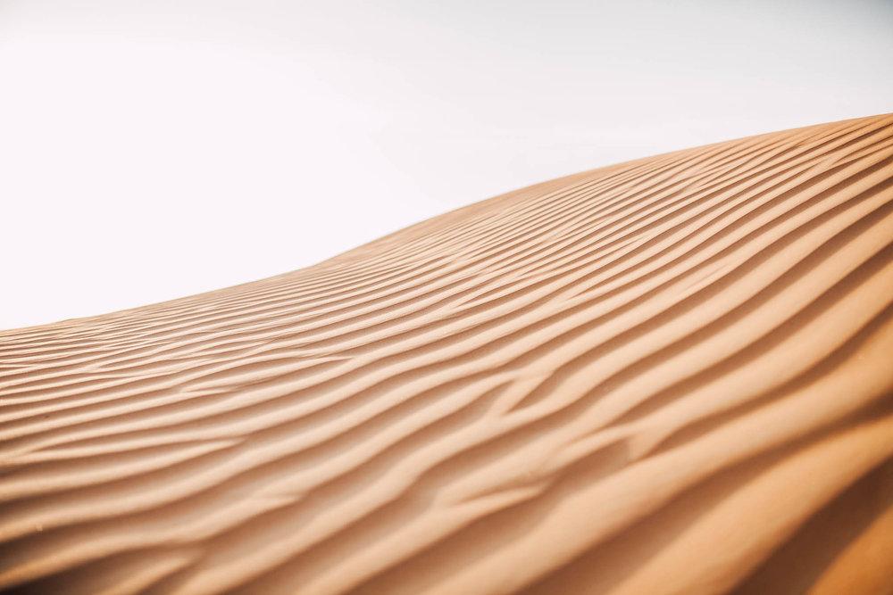 Dubai - Desert (1 of 1)-15.jpg