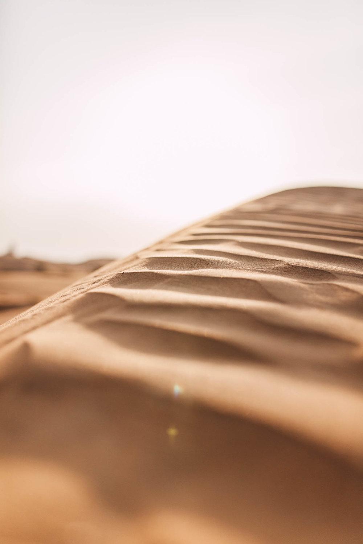 Dubai - Desert (1 of 1)-14.jpg