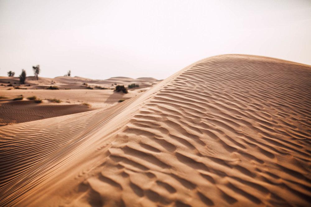 Dubai - Desert (1 of 1)-13.jpg