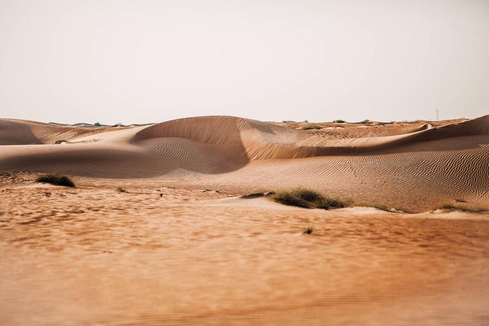 Dubai - Desert (1 of 1)-3.jpg