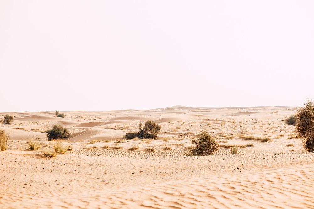Dubai - Desert (1 of 1)-40.jpg