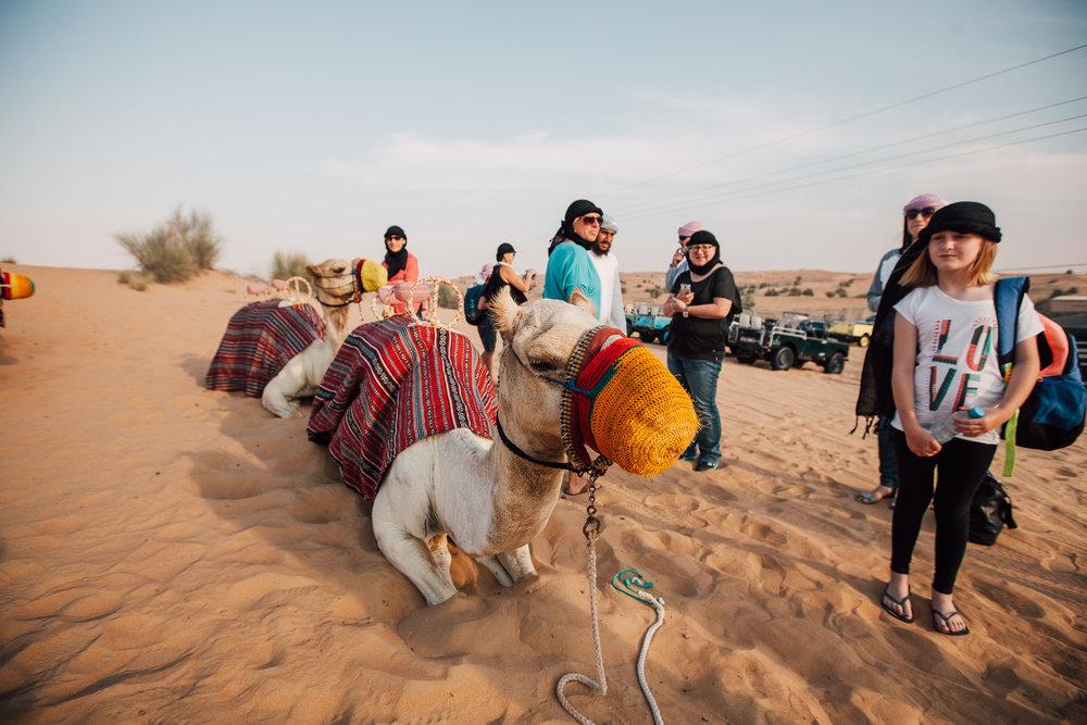 Dubai - Desert (1 of 1)-37.jpg