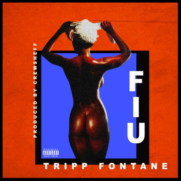 f.i.u  by tripp fontane cover art