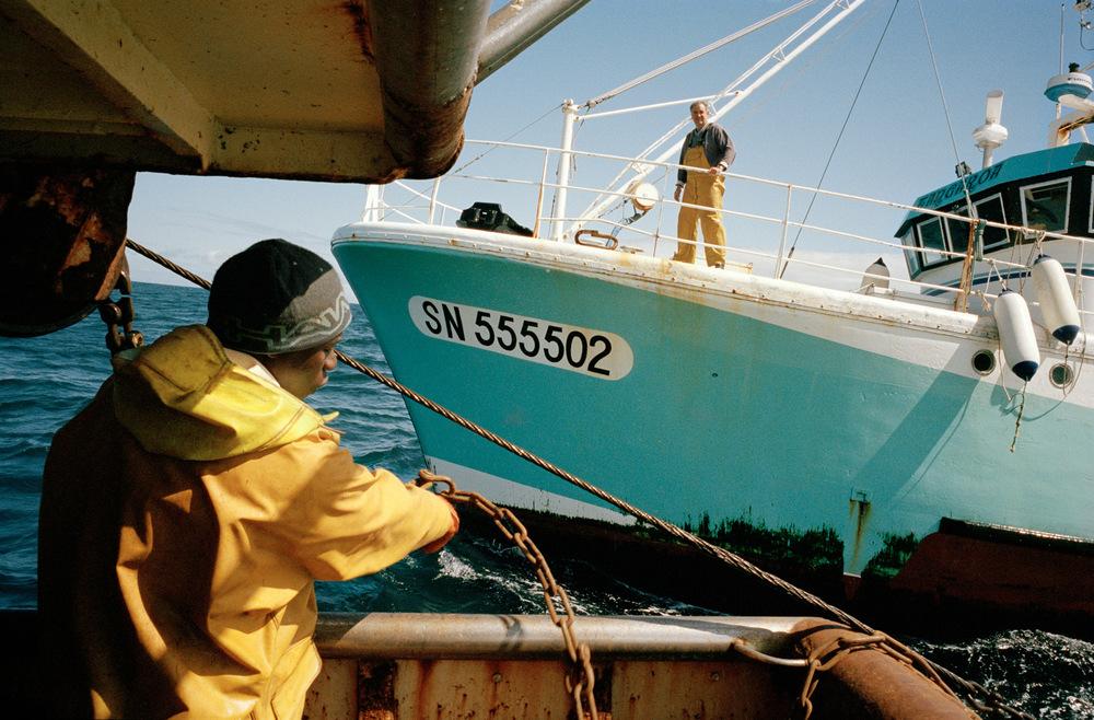 Babacar à l'arrière du bateau en manœuvre avec la seconde embarcation.   Le type de poisson pêché par ces chalutiers varie en fonction des saisons et des quotas européens. Les pélagiques ramènent essentiellement du merlu, du bar, de la sardine, du thon blanc et nouvellement de l'anchois depuis la levée de l'interdiction de 2005 à 2010.