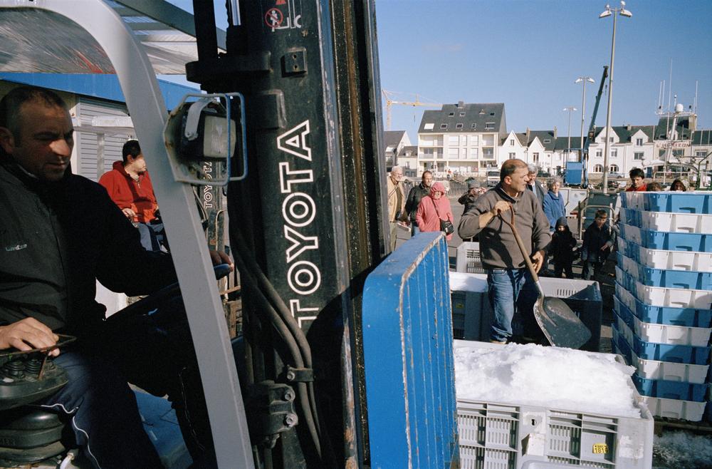 """Déchargement du poisson, port de La Turballe, Loire atlantique. 2013          Normal.dotm   0   0   1   19   113   ecranomade   1   1   138   12.0                      0   false     21     18 pt   18 pt   0   0     false   false   false                                       /* Style Definitions */ table.MsoNormalTable {mso-style-name:""""Tableau Normal""""; mso-tstyle-rowband-size:0; mso-tstyle-colband-size:0; mso-style-noshow:yes; mso-style-parent:""""""""; mso-padding-alt:0cm 5.4pt 0cm 5.4pt; mso-para-margin-top:0cm; mso-para-margin-right:0cm; mso-para-margin-bottom:10.0pt; mso-para-margin-left:0cm; mso-pagination:widow-orphan; font-size:12.0pt; font-family:""""Times New Roman""""; mso-ascii-font-family:Cambria; mso-ascii-theme-font:minor-latin; mso-fareast-font-family:""""Times New Roman""""; mso-fareast-theme-font:minor-fareast; mso-hansi-font-family:Cambria; mso-hansi-theme-font:minor-latin;}      Le contrôle des quotas est rigoureux, les gendarmes maritimes viennent fréquemment contrôler la marchandise à l'arrivée des bateaux au port."""