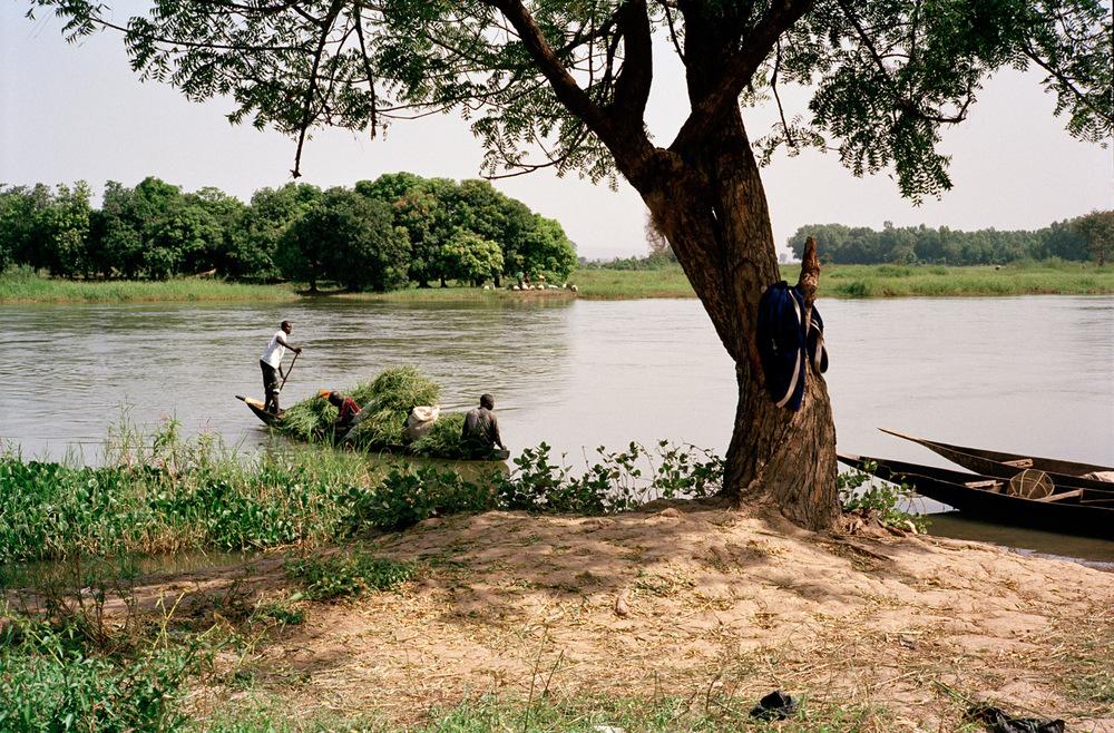 Berges du Fleuve Niger. Quartier de Magnambougou, Bamako, Mali.