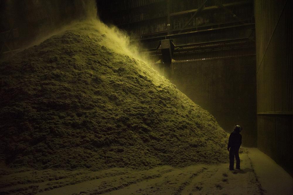 Usine du Gol de St-Louis. La canne à sucre est la principale culture de La Réunion. Lors des cinq mois de la campagne sucrière (mi-juillet à mi-décembre), la bagasse, résidu fibreux de la canne, est brûlée dans les usines d'Albioma, en association avec du charbon. C'est la principale énergie renouvelable de l'île avec l'hydraulique. Juillet 2015, St-Louis, Ile de la Réunion.