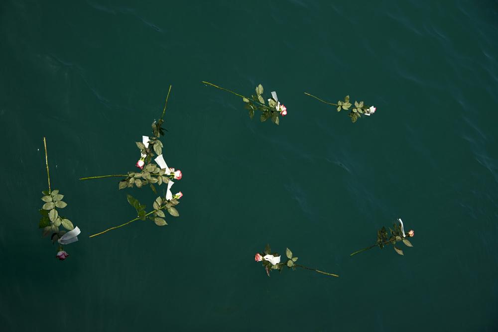 15- Des roses sont symboliquement jetées à la mer pour tous les autres corps qui n'ont pu être ramenés.  A ce jour, près de 80.000 migrants sont arrivés en Italie par la mer depuis le début de l'année (contre un peu plus de 83.000 durant la même période l'année dernière) Plus de trois mille autres sont morts ou portés disparus en Méditerranée d'après des chiffres fournis par l'Organisation Internationale pour les Migrations. Depuis le début de sa campagne en février dernier, l'Aquarius a déjà sauvé 4488 personnes.