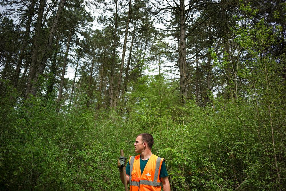 Ouvrier de l'ONF en débroussaillage sur une parcelle de la forêt Domaniale de Verdun. Douamont, Meuse, Alsace-Champagne-Ardenne-Lorraine, 09.05.2016