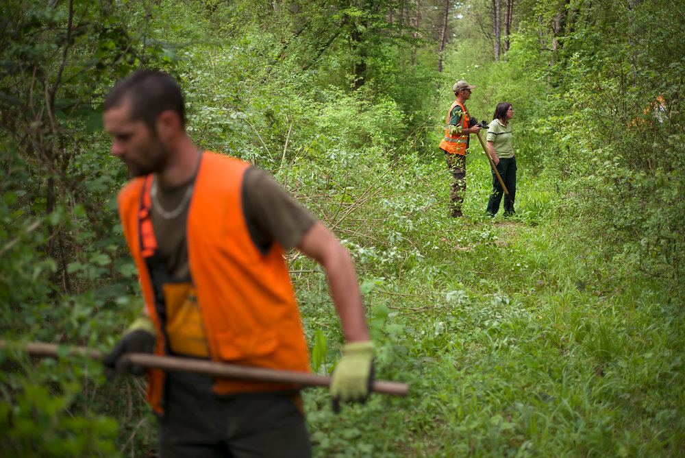 Ouvriers de l'ONF en débroussaillage sur une parcelle de la forêt Domaniale de Verdun. Douamont, Meuse, Alsace-Champagne-Ardenne-Lorraine, 09.05.2016