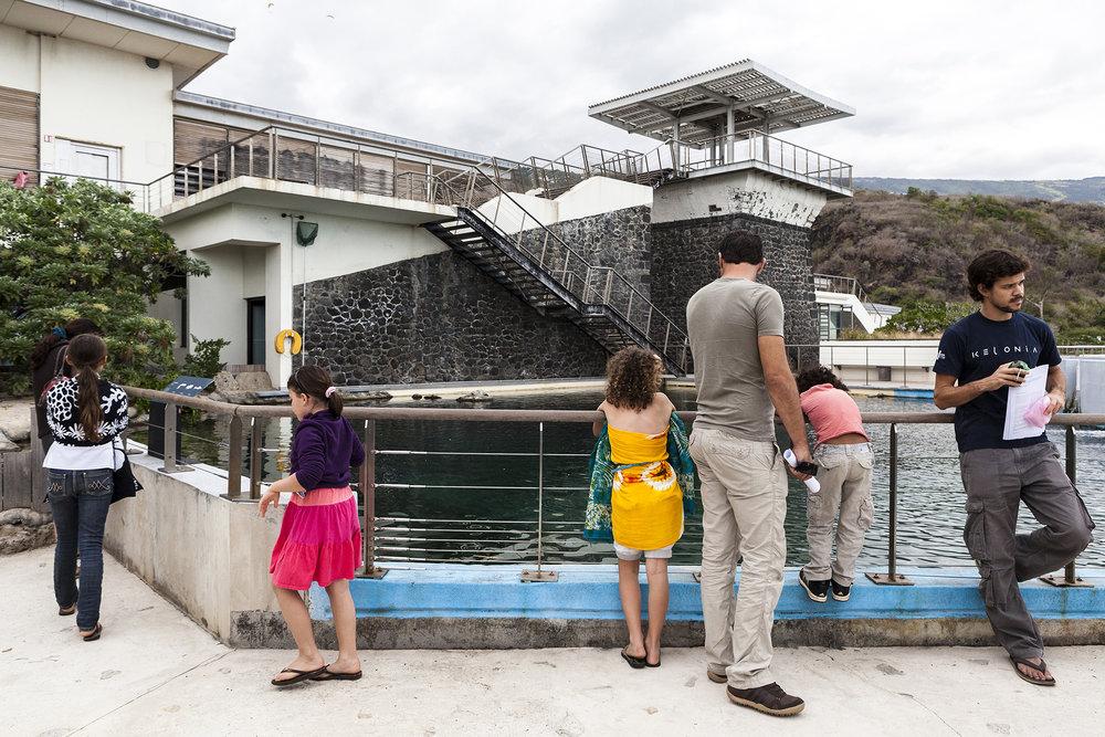 28 juin 2014, vue de Kélonia qui est l'observatoire des tortues marines de la Région Réunion. Saint-Leu, Ile de la Réunion