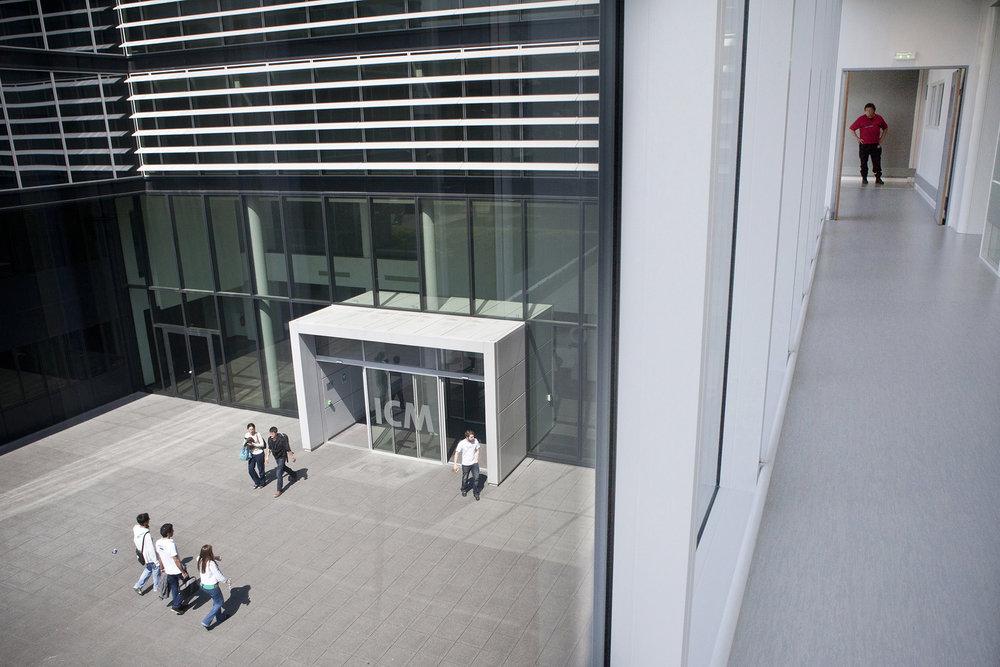 5 juin 2013. Entrée l'Institut du Cerveau et de la Moelle Epinière (ICM) sur le site de l'hôpital de la Pitié-Salpêtrière à Paris