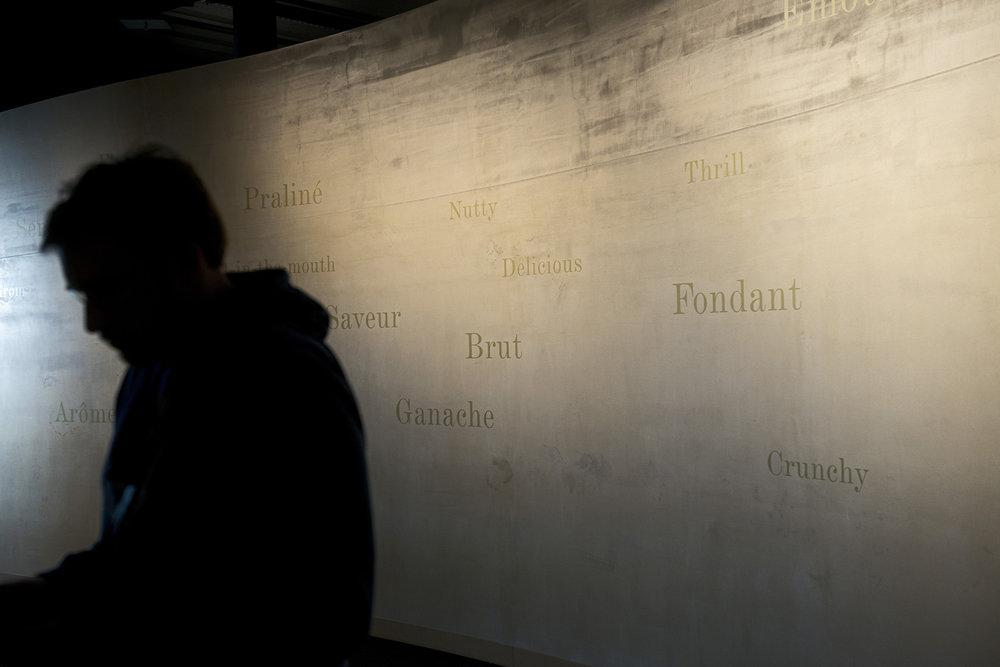 CITE DU CHOCOLAT VALRHONA POUR MARIE LAVILLAINE TAIN L HERMITAGE LE 25 FEVRIER 2015