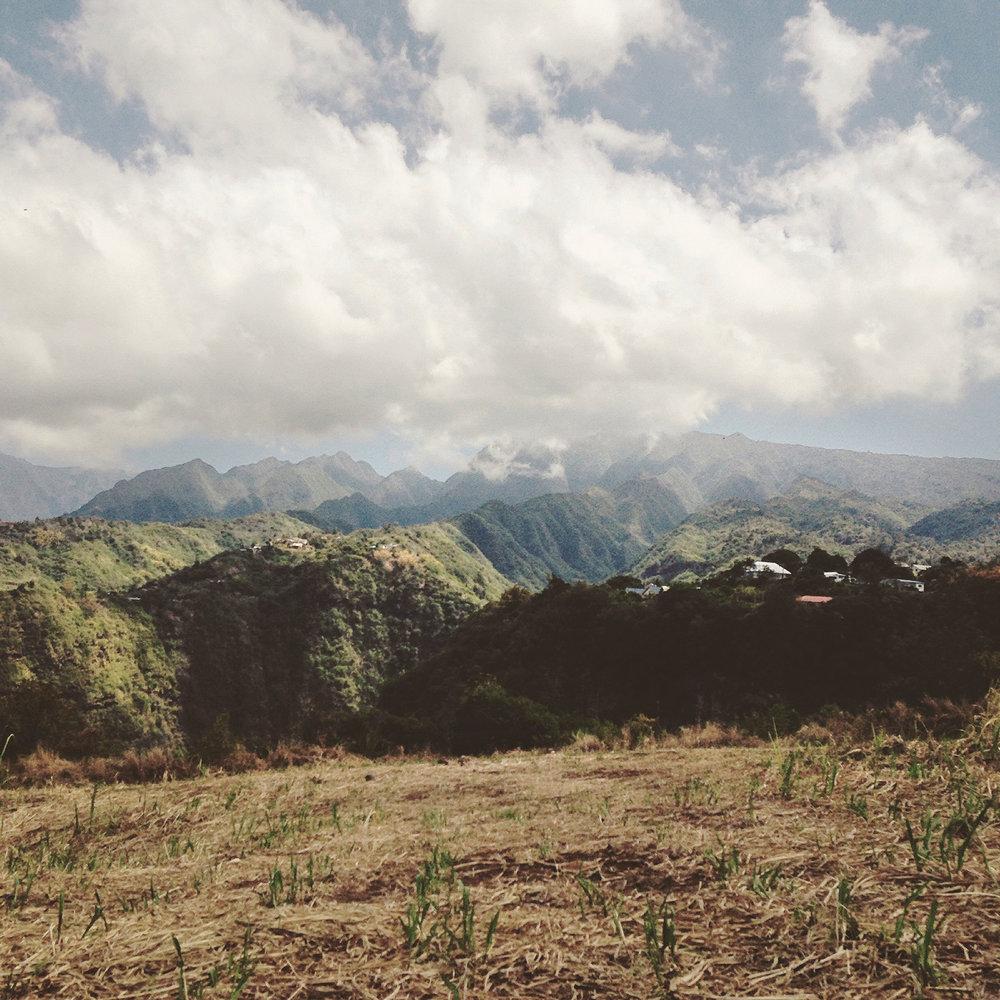 MFache_OctNov2016_InstKreol_Ile de La Reunion_0105.jpg