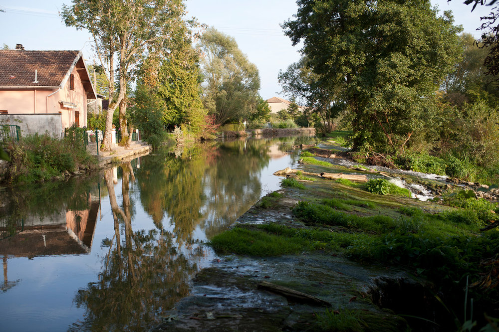 11_©Nicolas_Leblanc_08.09.14_Meuse-sauvage_Pagny-la-blanche-côte_IMG_8448.jpg