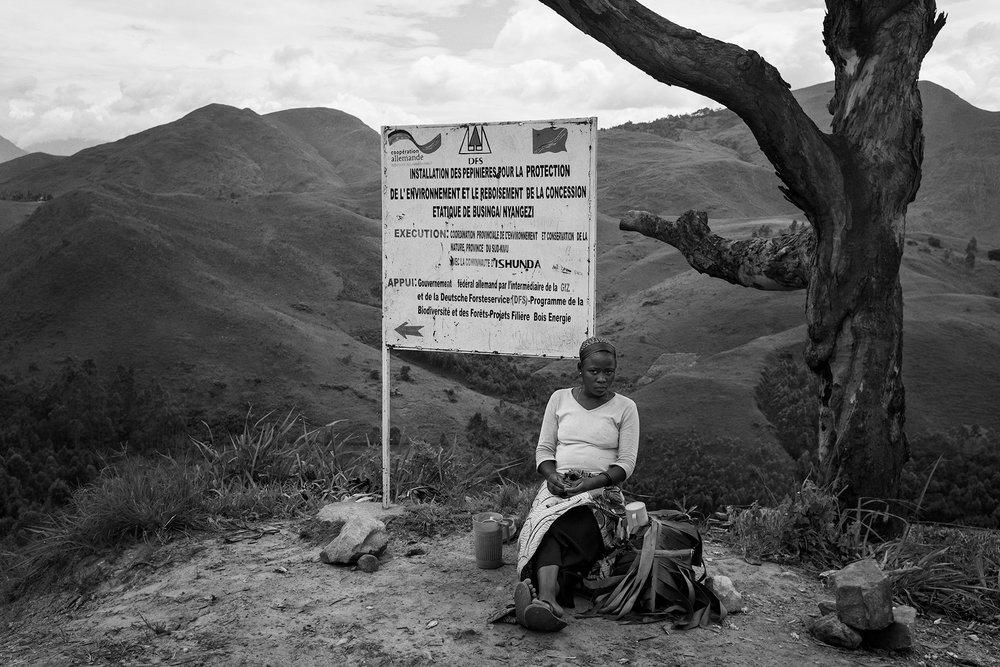 Kotya Libaya : Le bois Congolais a quel prix?