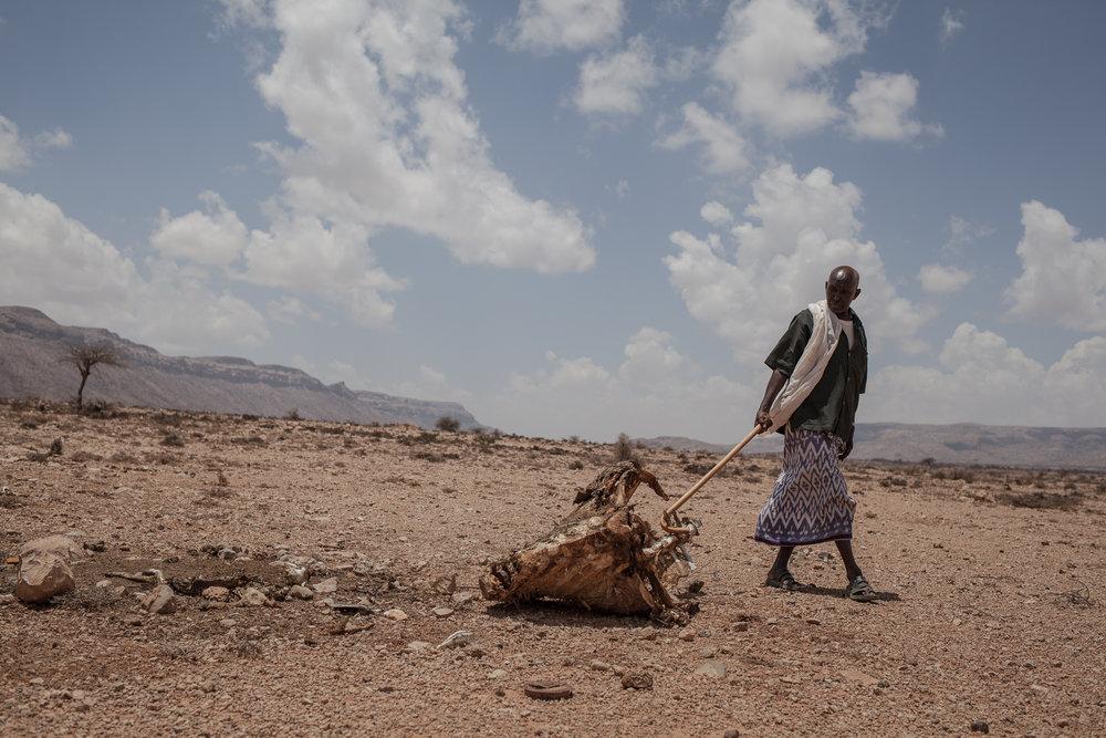 Sécheresse au Somaliland (Somalie)