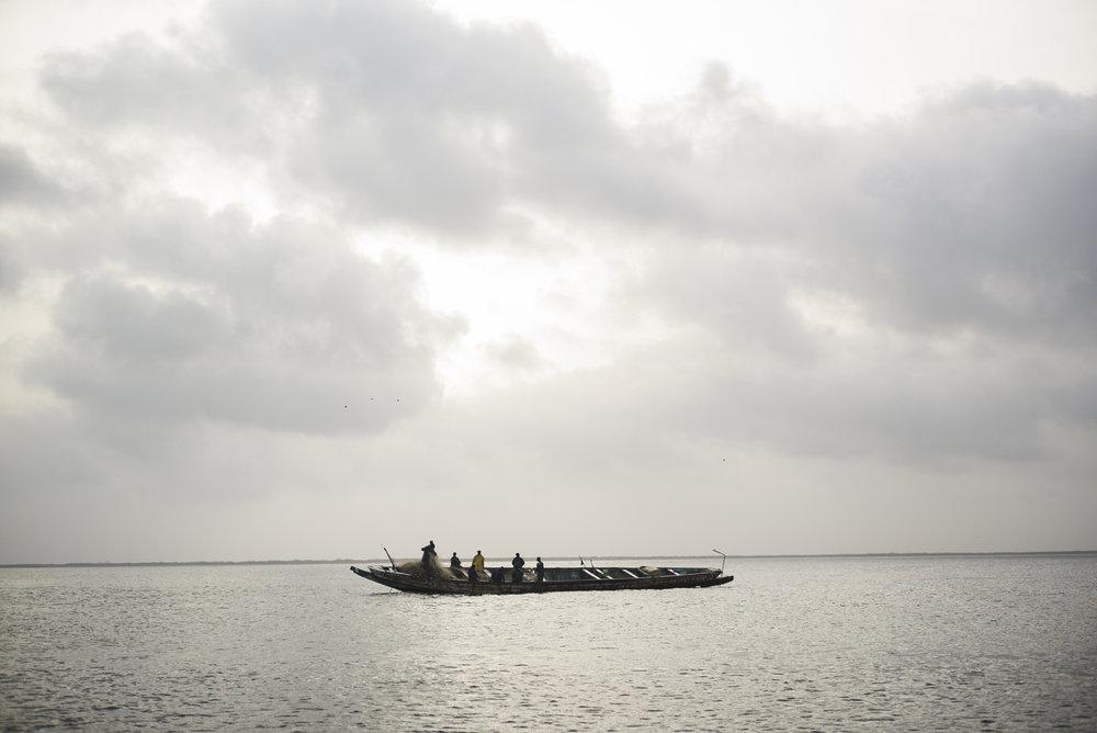 Delta du Siné-Saloum. Sénégal.