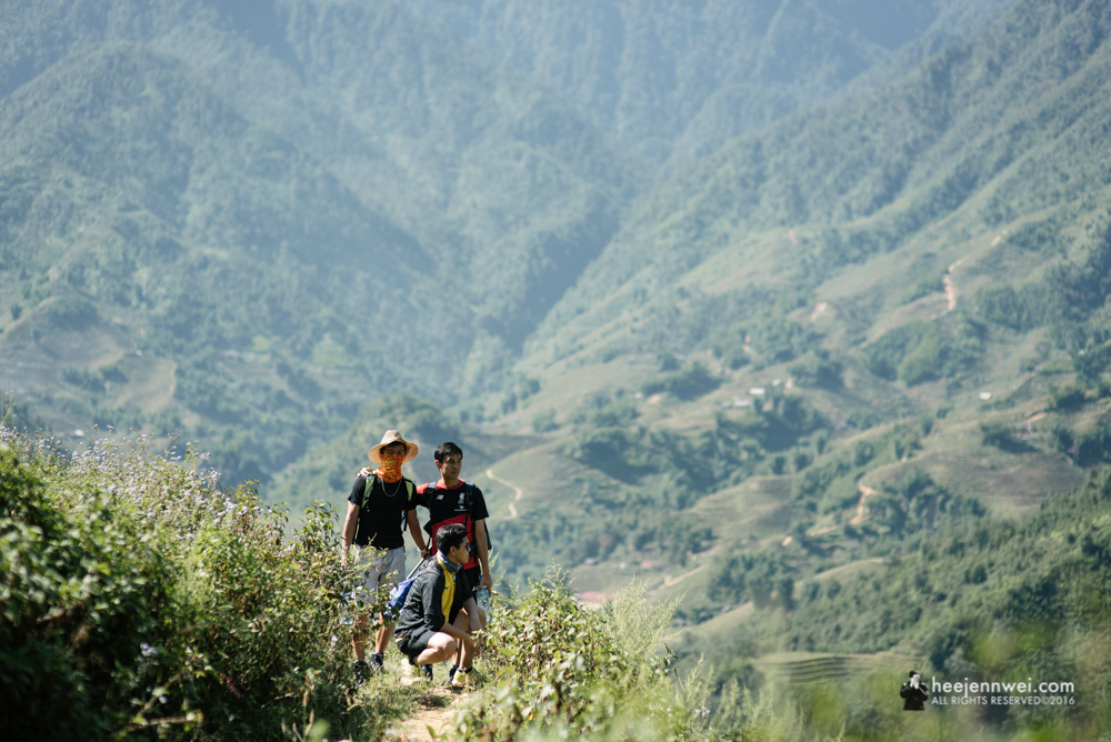 Sapa's Muong Hoa Valley spreads over 4 km length, 2 km width with at least 159 stones.
