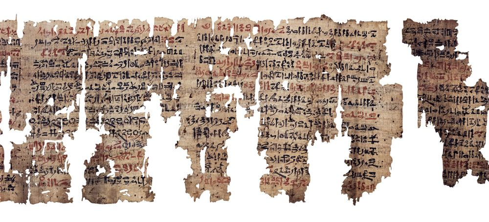 Figure 2: An example of an Egyptian medical papyrus dating to the New Kingdom. Known as The London Medical Papyrus, it is now housed in the British Museum (EA10059, 2) and contains medical and magical texts including incantations to prevent miscarriages. Image courtesy of the British Museum.